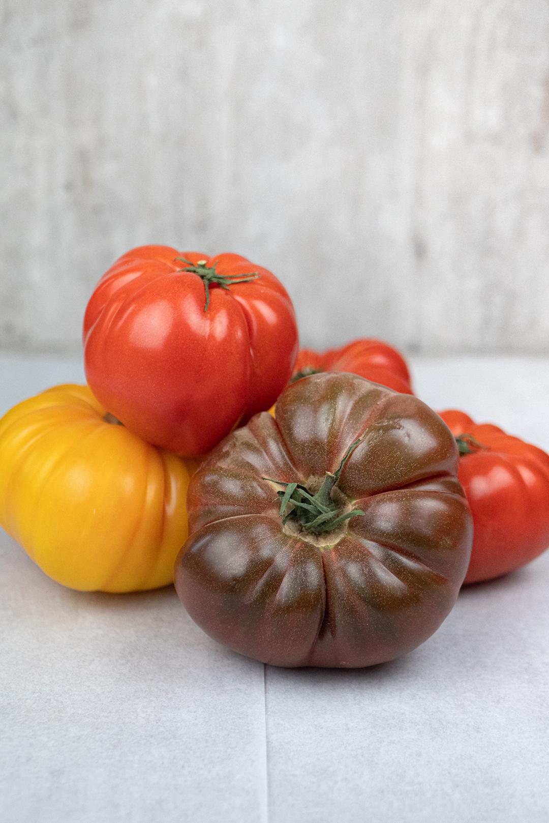 Tomater_galopin