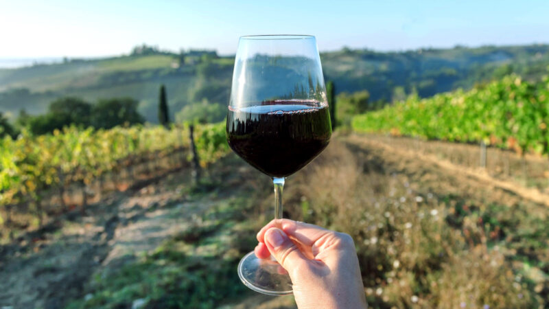 Wine glass over beautiful landscape of Tuscany, with green valley of grapes and hills around. Wine beverage tasting in Italy during harvest.